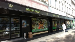 Marijuana Shop in our neighborhood