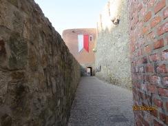 walking wall of bratislava