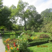 Peacefield Garden